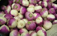 PROCESSING LINES FOR TURNIPS