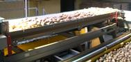 CONTINUOUS WEIGHER CONVEYOR